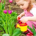 С чего начать трудовое воспитание ребёнка?