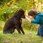 Домашние животные и развитие ребёнка — в чём связь?