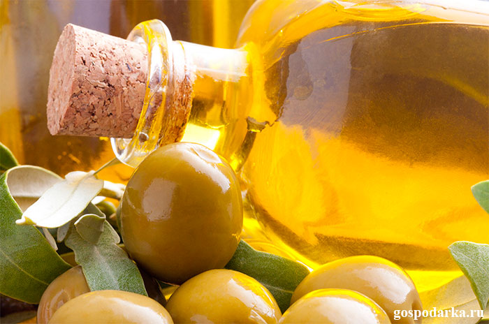 оливковое-масло