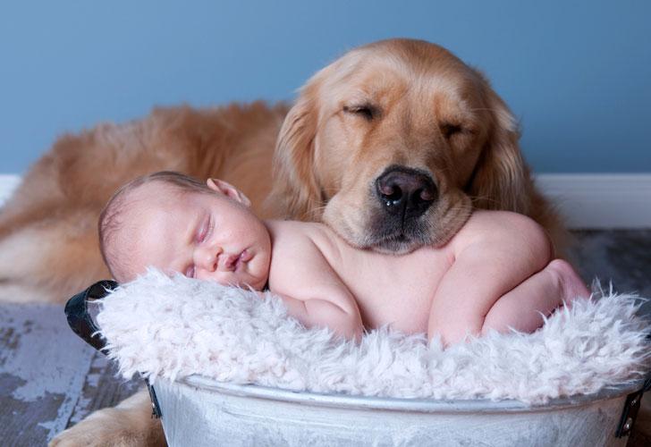 младенец-с-собакой