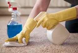 Как сделать эффективное средство для чистки ковров?