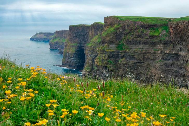 весна в Ирландии