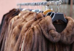 Типы натурального меха для пошива шуб