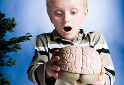 Как объяснить ребенку, что такое мозг и как он работает?