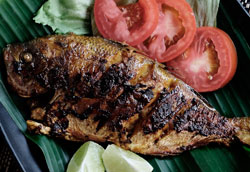 Рыба на гриле: основные правила готовки
